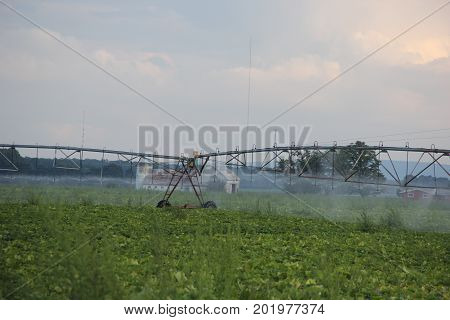 Center pivot irrigation watering farm fields in Michigan