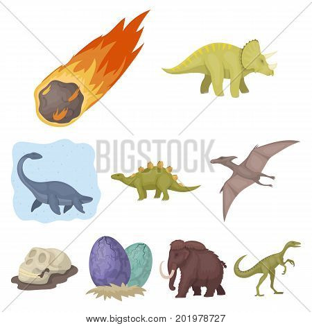 Ancient extinct animals and their tracks and remains. Dinosaurs, tyrannosaurs, pnictosaurs.Dinisaurs and prehistorical icon in set collection on cartoon style vector symbol stock web illustration.