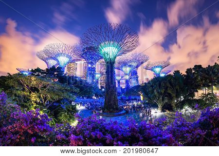 travelSupertree garden at night Garden by the Bay SingaporeSINGAPORE-JULY 29 2017: Night view of The Super tree Grove at Gardens by the Baytravel