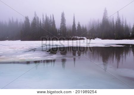 Thick sunrise fog at Reflection Lake in Mount Rainier National Park