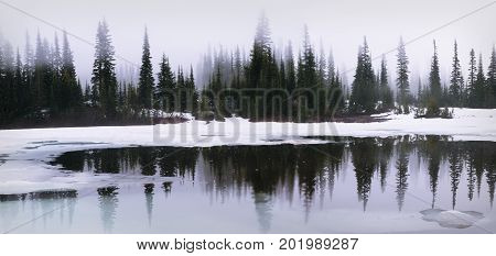 Thick sunrise fog at Reflection Lake in Mount Rainier National Park
