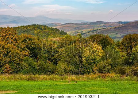 Lovely Carpathian Countryside In Mountains