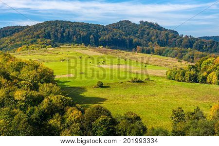Rural Pasture Fields On Carpathian Hills