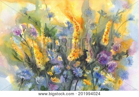 Colorful summer meadow flowers watercolor background. Birthday card