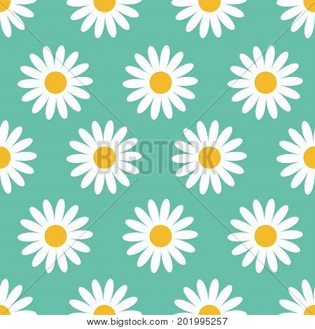 Cute camomile plant collection. Seamless Pattern. White daisy chamomile flower icon. Growing concept. Wrapping paper textile template. Green background. Flat design. Vector illustration