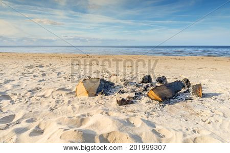 Remains of firewood on sandy beach of the Baltic Sea, Europe
