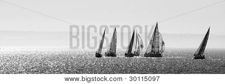 Yachts black and white