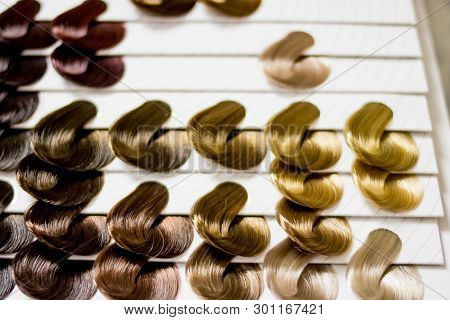 Complete Set Of Locks Of All The Most Used Hair Color Samples, Rounded Shape.hair Stylist Office.dye