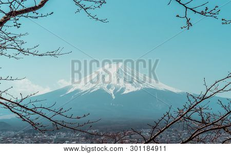 Mountain Fuji In Winter Framed By Dry Fall Tree In Blue Color