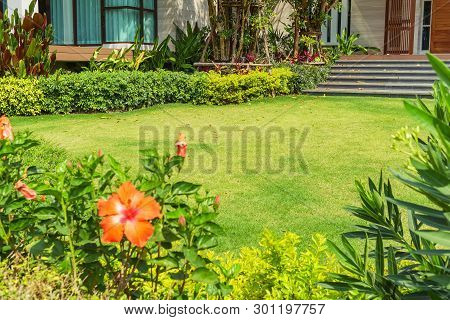 Flowers In The Garden, Green Grass, Modern House With Beautiful Landscaped Front Yard, Lawn And Gard