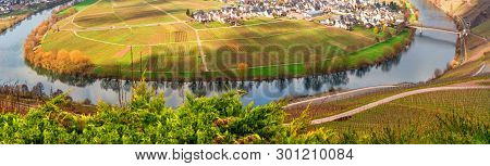 Panoramic View Of The Moselle, Here Forms The Narrow Moselle Loop Around The Town Of Trittenheim.