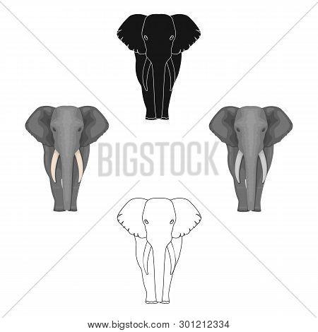 The elephant, the biggest wild animal. African elephant with tusks single icon in cartoon, black style vector symbol stock illustration web. poster