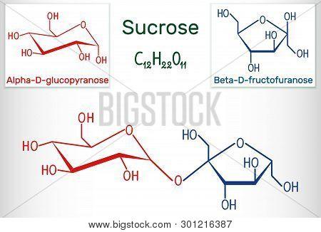 Sucrose Sugar Molecule. Structural Chemical Formula And Molecule Model. Vector Illustration