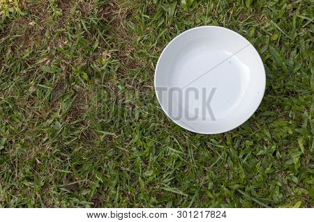 A Bowl On The Grass