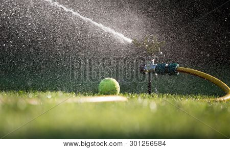 Watering Lawn On Tennis Court. Splashing Drops From Hose And Gardening Sprayer