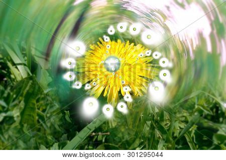 Psychedelic Effect Prana Nature Of The Plant, Trip Hallucination Of A Geometric Pattern Of Light