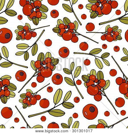 Seamless Pattern With Cranberries And Leaves On White Background