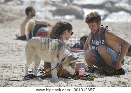 Tel Aviv, Israel - April 23, 2017: Happy Family With Husky Dog At The Gordon Beach