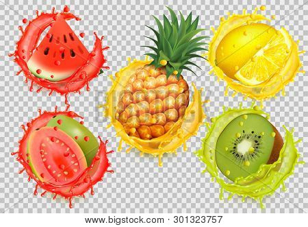 Set Of Fruit Juice Splash. Watermelon, Citron, Guava, Pineapple. Vector