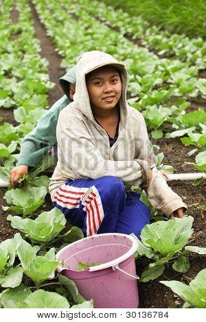 Junge Landwirtschaft Mädchen