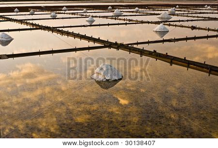 Beautiful landscape of a summer with a salt farm