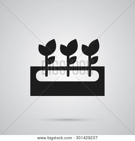Isolated Flowers Icon Symbol On Clean Background.  Decoration Element In Trendy Style.