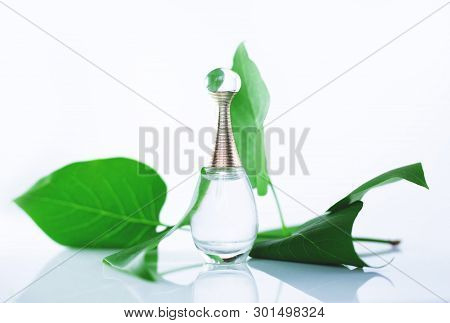 Perfume And Green Leaves On A White Background