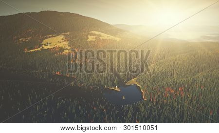 Panoramic Mountain Forestry Slope Dawn Aerial View. Sunrise Highland Lake Wild Nature Habitat Overview. Sunny Coniferous Fir Tree Wood Scenery Clean Ecology Concept Drone Flight