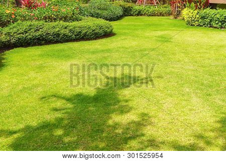 Path In The Garden, Landscape Design, Peaceful Garden, Green Garden And Lawn., Green Lawn, The Front