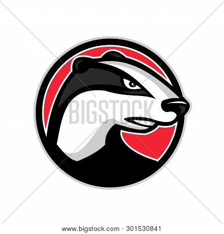 Mascot Icon Illustration Of Head Of A Badger, A Short-legged Omnivore In The Families Mustelidae And