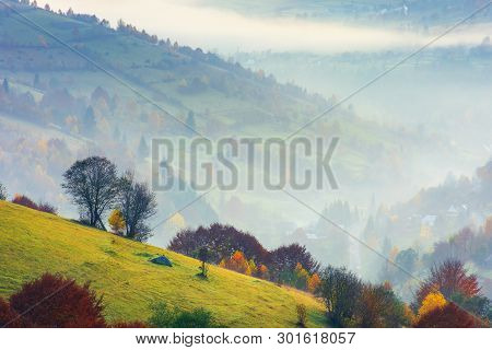 Rural Background On A Foggy Dawn In Mountains. Trees On A Grassy Slope. Village Down In The Valley.