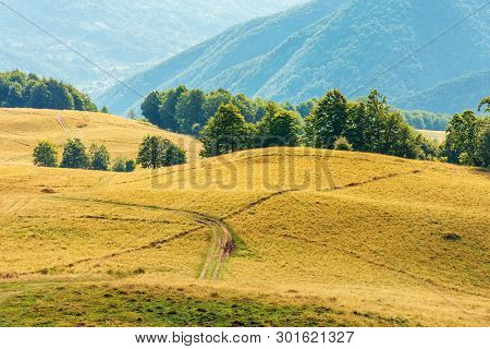 Beautiful Countryside Landscape In Late Summer. Dirt Road Downhill Through Meadow. Beautiful Area On