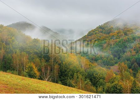Wonderful Nature Scenery In Autumn. Foggy Sunrise In Mountains. Trees In Colorful Foliage. Cold Weat