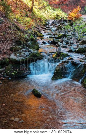 Brook With Cascade In Beech Forest. Beautiful Nature Background In Autumn Season. Colorful Scenery,
