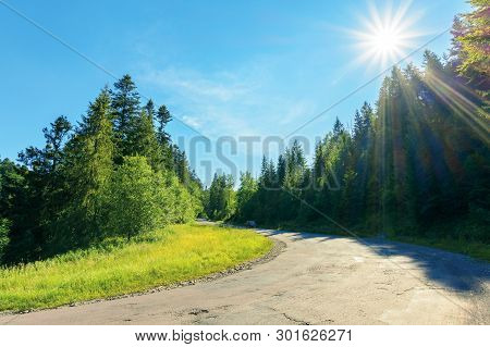 Serpentine Uphill Through Country Forest. Beautiful Scenery On A Bright Summer Day. Explore Back Cou