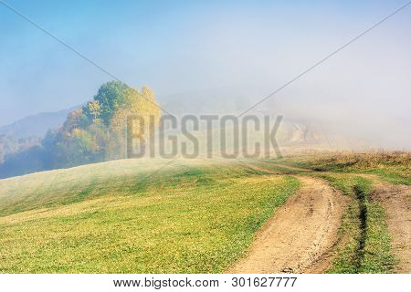 Early Autumn Countryside Scenery In Foggy Weather. Trees In Colorful Foliage. Country Road Through T