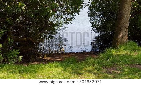 A View Of The Lake From The Bank Between The Trees.