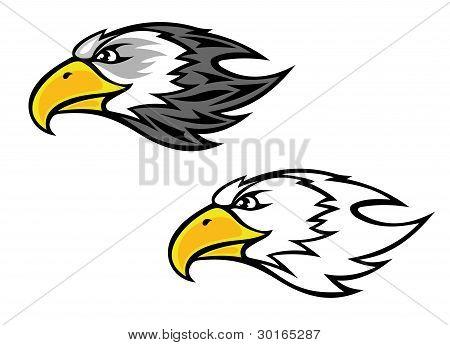 Cartoon falcon or hawk head for mascot or tattoo design poster