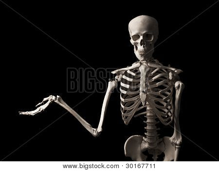 Human skeleton with an outstretched hand isolated on black background poster