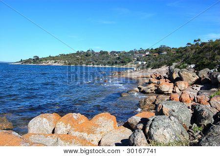 Coast Area