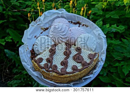 A Piece Of Cake And Marshmallow In A Round Box Stands Among The Green Vegetation In Nature