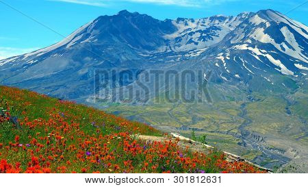 A Beautiful View Of South Colwater Ridge Trail At Mount Saint Helens..