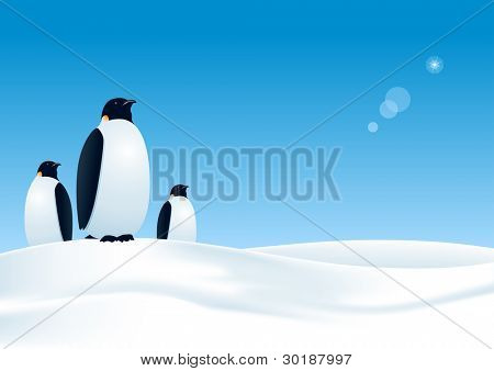 three penguins waiting. All elements layered separataly in vector file. mesh used.