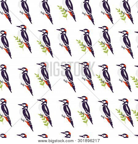 Vector Flat Seamless Pattern With Hand Drawn Forest Woodpecker Birds And Fgreen Brunch Elements Isol