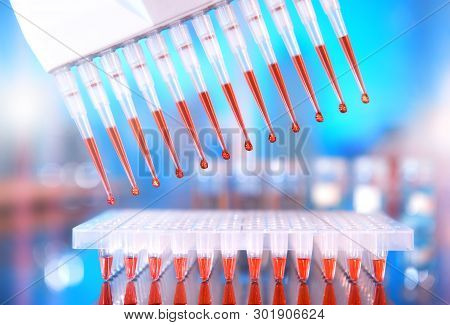 Scientific Background. Multichannel Pipette Tips Filled In With Reaction Mixture To Amplify Dna In P