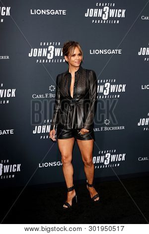 LOS ANGELES - MAY 15:  Halle Berry at the
