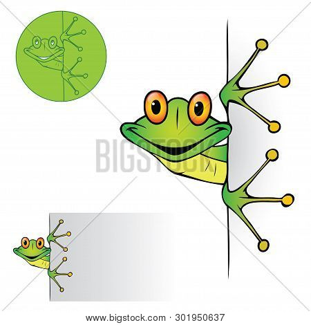 Cute Frog Peeking - Vector Illustration - Vector