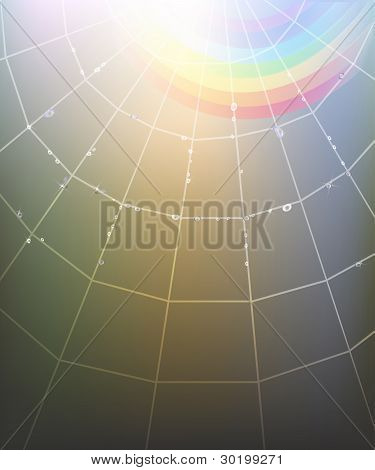 Spider Web Rainbow Background