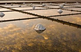 Beautiful landscape of a summer with a salt farm