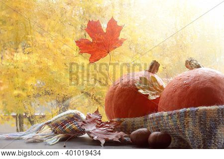 Two Pumpkins Are Wrapped In A Scarf And Decorated With Fallen Leaves In Front Of The Window. Warm In